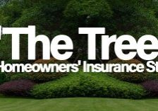 Home-_The-Tree_-A-Homeowners-Insurance-Story