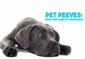 Pet Peeves_ Dogs and Liability Insurance